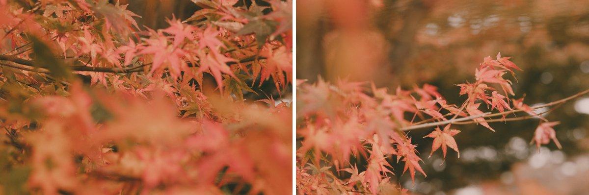 Japan_Photographer_0023